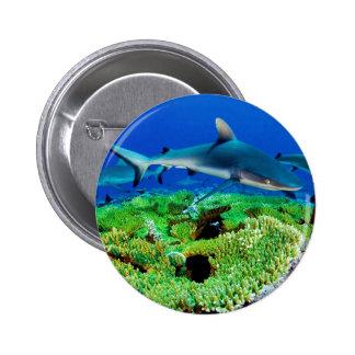 Reef Shark Photos 6 Cm Round Badge