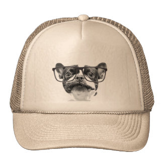 Reputable French Bulldog with Glasses Cap