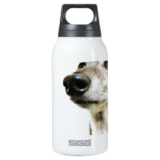 Reuben Claws 0.3 Litre Insulated SIGG Thermos Water Bottle