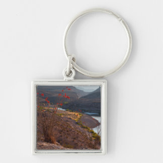 Rio Grande Running Through Chihuahuan Desert Silver-Colored Square Key Ring