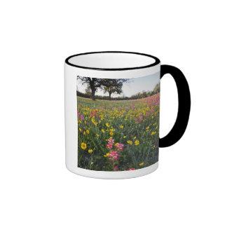 Roadside wildflowers in Texas, spring 3 Ringer Mug