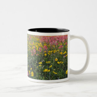 Roadside wildflowers in Texas, spring 3 Two-Tone Mug