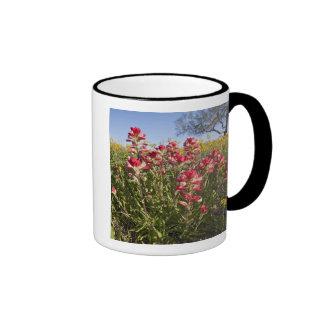 Roadside wildflowers in Texas, spring 4 Ringer Mug