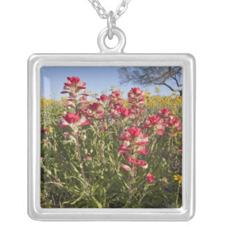 Roadside wildflowers in Texas, spring 4 Square Pendant Necklace
