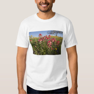 Roadside wildflowers in Texas, spring 4 T Shirts