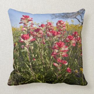 Roadside wildflowers in Texas, spring 4 Throw Cushions