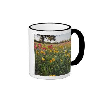 Roadside wildflowers in Texas, spring Ringer Mug