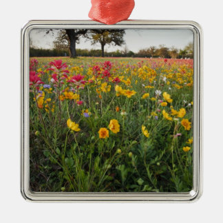 Roadside wildflowers in Texas, spring Silver-Colored Square Decoration