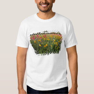 Roadside wildflowers in Texas, spring T-shirts