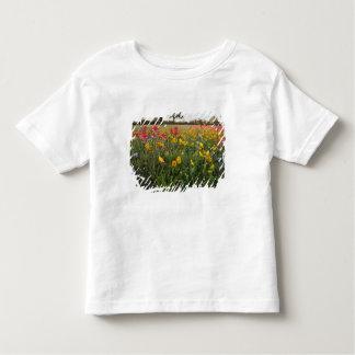 Roadside wildflowers in Texas, spring Tshirts