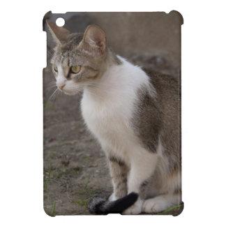 Romania, Transylvania, Sighisoara. Pet cat. iPad Mini Cover