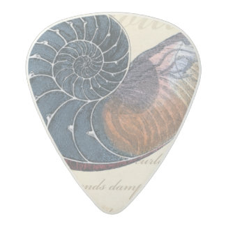 Romantic Seashell Acetal Guitar Pick