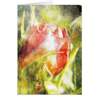 Rose Bud Greeting Card