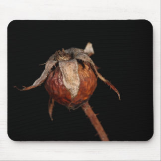 Rose Hip Mouse Pad