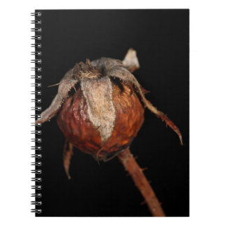 Rose Hip Note Book