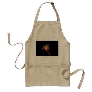 Rose Hip Standard Apron
