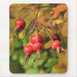 Rose Hips Mouse Pad
