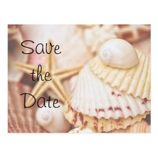Save the Date Seashell Postcard