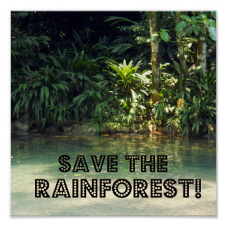 Save the Rainforest! Poster