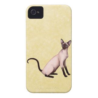 Seal Point Siamese Cat Blackberry Bold Case