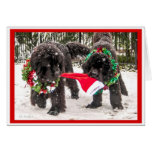 Sharing the season the Newfie Way! Greeting Card