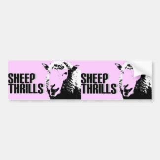 sheep thrills double bumper sticker