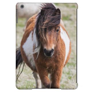 Shetland Pony, Shetland Islands, Scotland iPad Air Cover