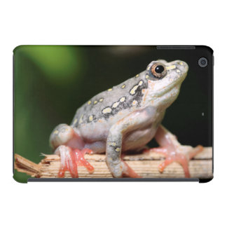 Side View Of Frog On Reed iPad Mini Retina Cover