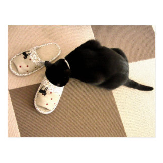 Silly kitty with its nose in a sandal postcard