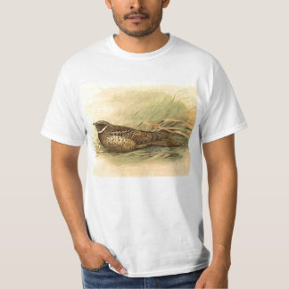 Siphonorhis Americana Value T-Shirt