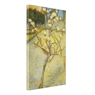 Small Pear Tree in Blossom Van Gogh Fine Art Gallery Wrapped Canvas