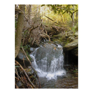 Small Waterfall in the Great Smokey Mountains Poster