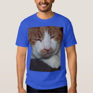 Smiley cat t shirts