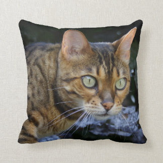 Sneaking Bengal Cat Cushions