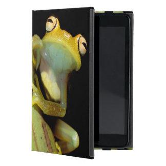 South America, Ecuador, Amazon. Tree frog (Hyla iPad Mini Cases