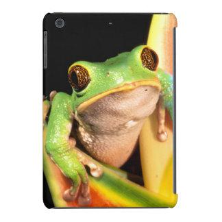 South America, Ecuador, Amazon. Tree frog iPad Mini Case
