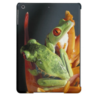 South America. Red-eyed tree frog Agalycmis iPad Air Case