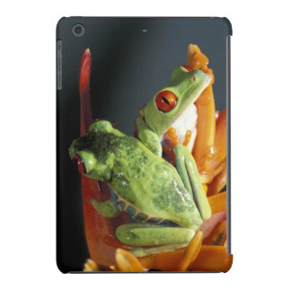 South America. Red-eyed tree frog Agalycmis iPad Mini Retina Covers