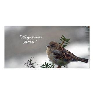 Sparrow, His eye is on the Sparrow! Customised Photo Card