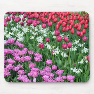 Spring daffodils and tulips garden mouse pad