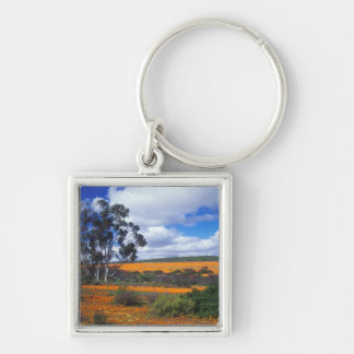 Spring flowers in Namaqualand, South Africa Silver-Colored Square Key Ring