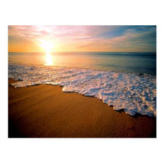 Sunset Beach Save the Date Postcard