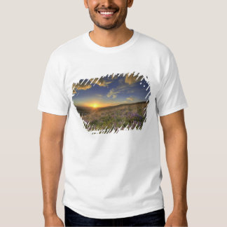 Sunset over the Bitterroot Mountains and vast T-shirt