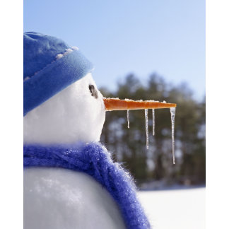 snowman with icicles on nose