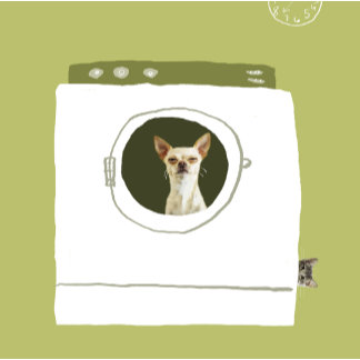"""Dog in Dryer, Cat Prank Poster Print"""
