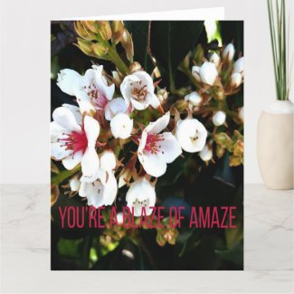 You're a Blaze of Amaze Card of Support