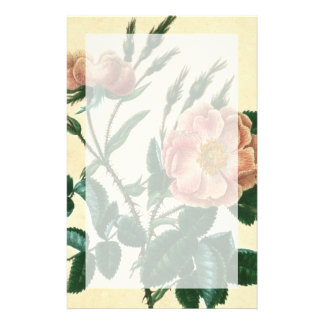 Sweet Briar Rose Stationery Design