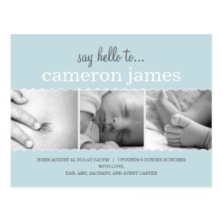Sweet Scallops Birth Announcement - Baby Boy Postcard