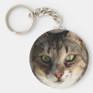 Tabby Cat Kitten Giving Eye Contact Basic Round Button Key Ring