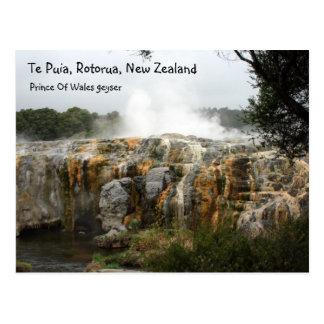 Te Puia, Rotorua, New Zealand Postcard